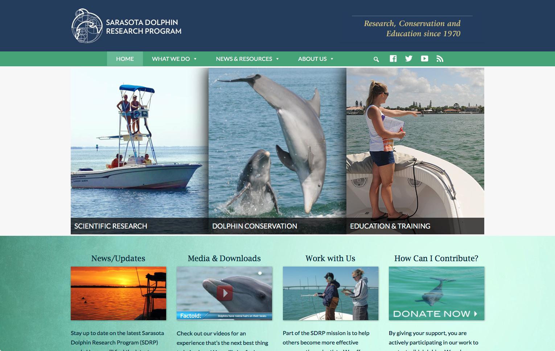 Sarasota Dolphin web site